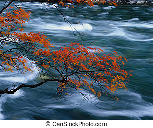 autumn - Jiuzhaigou Valley Scenic and Historic Interest...