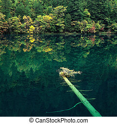 Green - Jiuzhaigou Valley Scenic and Historic Interest Area,...