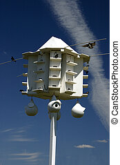 Purple Martin Birdhouse Community