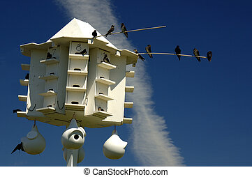 Purple Martin Bird House - Purple Martin Birdhouse Community