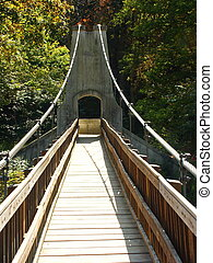 Fall Suspension - Suspension Bridge