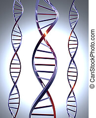 DNA 1 - 3D rendered double Helix / DNA.