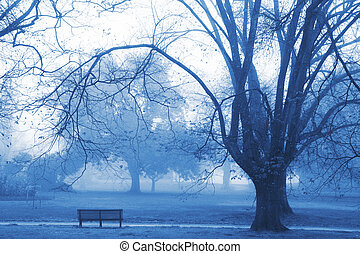 Morning Mist - Photo from the last winter in Melbourne,...