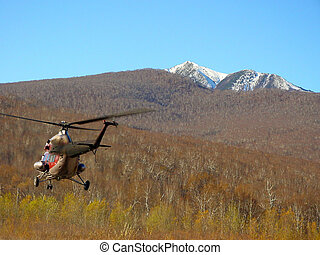 Helicopter ride above forest wilderness - Helicopter flying...