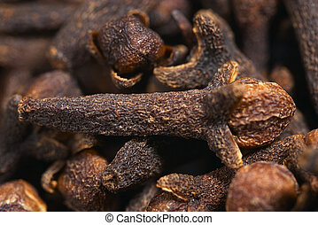 Cloves, macro - High-powerd macro of cloves