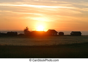 rural sunrise - A rural sunrise in Alberta,Canada.