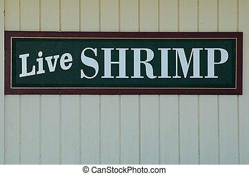 Live Shrimp Sign