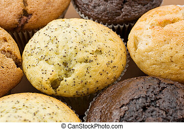 Food 4 - A Plate of muffins - Poppy seed muffin in focus