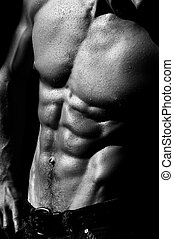 rippling male torso #2 - well defined naked male torso