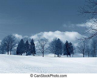 invierno, paisaje