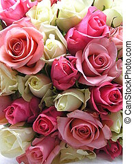 sweet roses - photograph of a bouquet of pink, white, and...