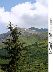 Alaskan Mountains - View of mountains in Alaska from across...