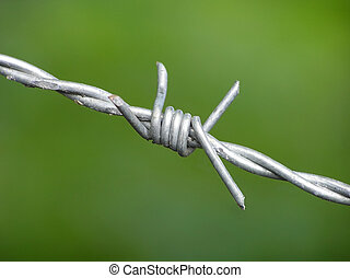 Barbwire on green background