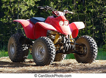 ATV - A ATV sits on a forest trail