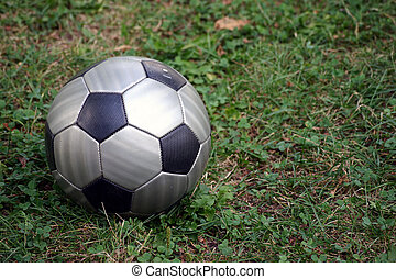 Soccer Ball - Soccer ball waiting to be kicked