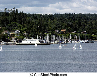 Out Sailing - Sailing at Bainbridge Island, off the coast of...