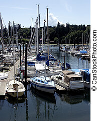 Patriotic Harbor - Bainbridge Island sail boats with...