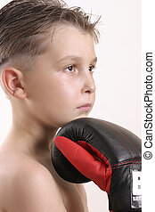 Boxer Champ - Young Boxer rests his chin on glove