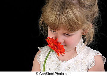 Child Girl Flower - Beautiful four year old girl smelling...