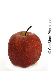 Apple - Pacific Rose - The Pacific Rose variety of eating...