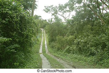 two lane road - a two lane road in a developing caribbean...