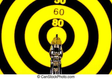On Target - Gun Pointed at a Target