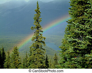 mountain rainbow - Rainbow in Jasper National Park, Canada