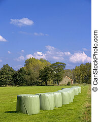 Harvesting - Agriculture, a field with hay stacks on a sunny...