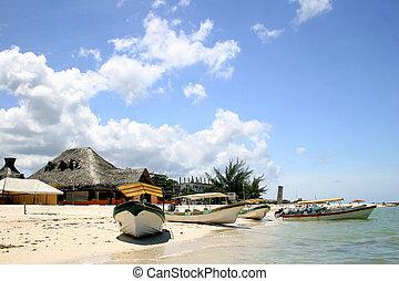Caribbean Fishing Village - Octopus fishing boats at...