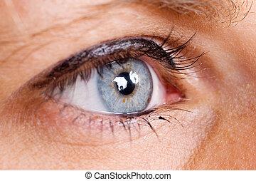 eye #1 - Blue female eye with eyeliner - Shallow Depth of...