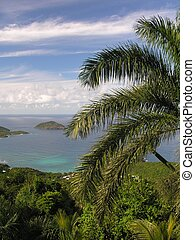 Tropical - Impressions of St. Thomas / U.S. Virgin Islands...