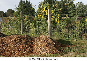 Garden 3. - Mulch piled up by the garden fence.