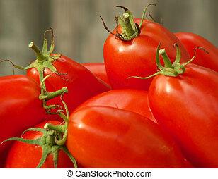 tomato harvest - close-up of the tomato harvest