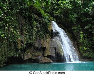Tropical Kawasan Falls in the Philippines - Kawasan Falls on...