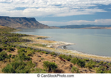 Abert Lake - Photograph of Abert Lake in South-Central...