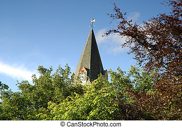 Church spire emerging from tree tops - Dornoch Cathedral,...