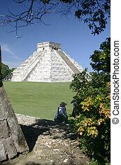 por, pirámide, árbol
