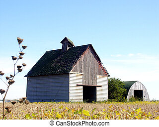 Corn Crib & Shed - Farmer's corn crib and shed after the...