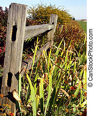 Country Fence - Country fence and garden on Midwestern farm,...