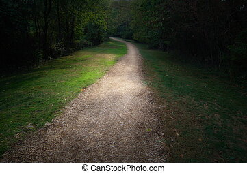 Follow the Path - path in park, into light