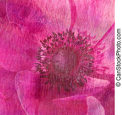 Floral texture - Soft, painterly effect achieved by...