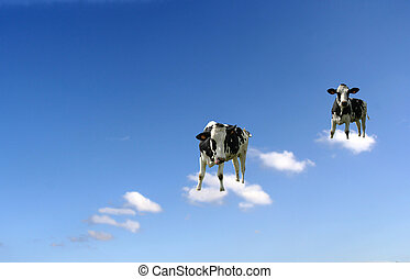 cows on clouds - Two cows on clouds