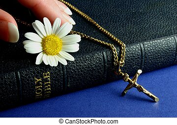 Hand touching Bible - Hand touching bible with gold crucifix...