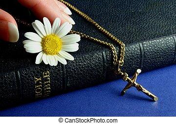 Hand touching Bible - Hand touching bible with gold crucifix...