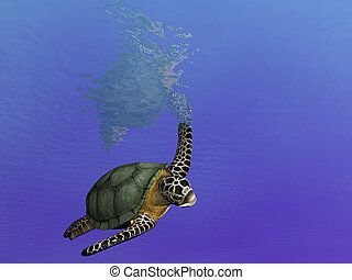 Swimming About Turtl - Render of undersea turtle making a...