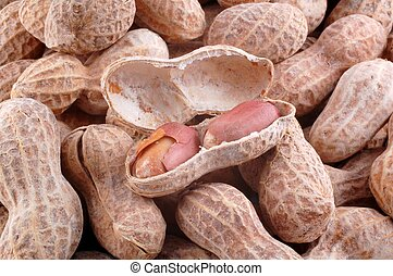 Peanut Pile - A open peanut shell on a pile of peanuts