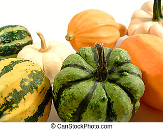 Gourds 3 - A bunch of gourds isolated on white