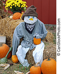 scarecrow - fall decorations with scarecrow