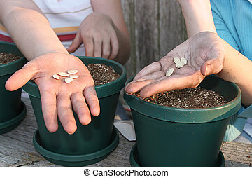 Seeds In Hand - The hands of two girls getting ready to...