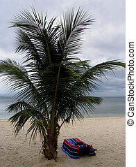 The Beach 2 - The Beach, Philippines